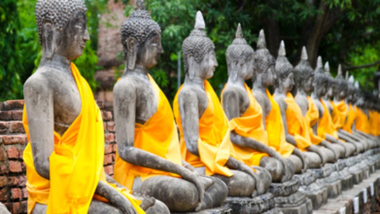 Meditation: nature's antihistamine