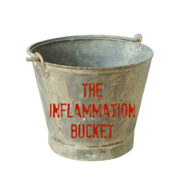 The inflammation bucket (why I can now eat shrimp)