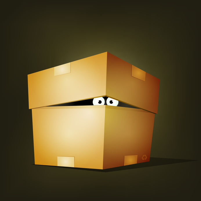 eyes peering out of a box