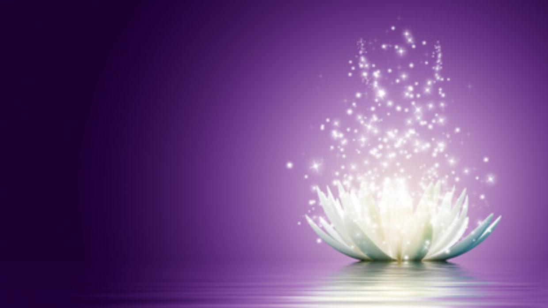 Lotus flower healing histamine magic lotus flower izmirmasajfo