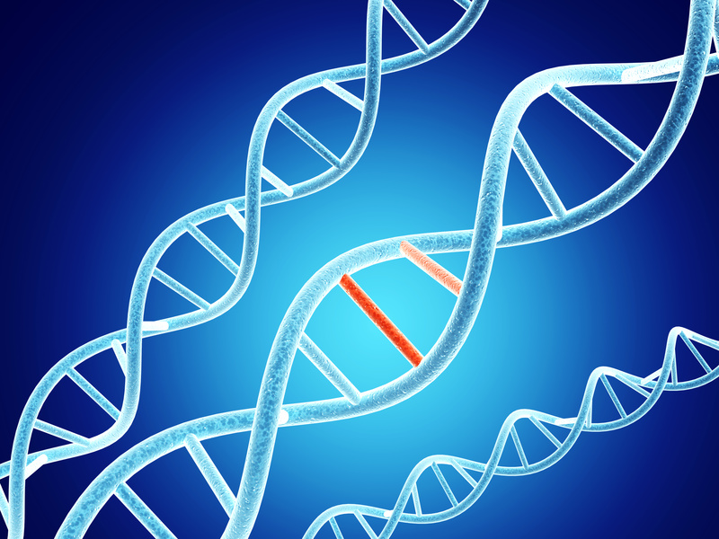 Digital models of DNA structure with problem element on abstract blue background. 3d render genetics of histamine intolerance